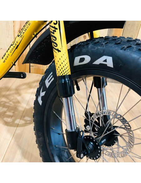 suspension fatbike biplace
